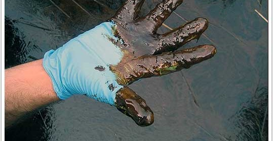 BP Oil Spill Settlements